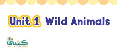 U1 Wild Animals
